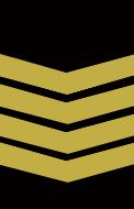 Bombeiro 1ª - Quadro Activo